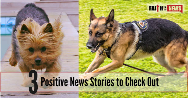 3 Positive News Stories to Check Out