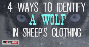 4 Ways To Identify A Wolf In Sheep's Clothing